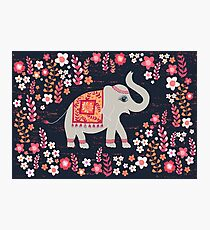 Elephants in the Flower Garden Photographic Print
