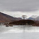 Scotland C1 by Krzysztof Nowakowski