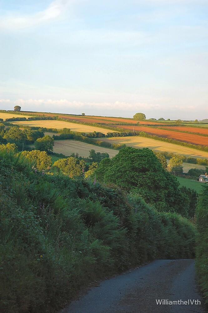 Fieldwork by WilliamtheIVth