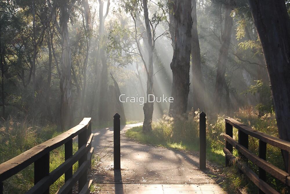 Mystical by Craig Duke
