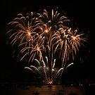 Palm Tree Fireworks by Michael Matthews