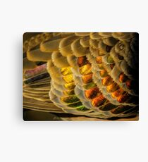 Feathers of Bronze and Gold Canvas Print