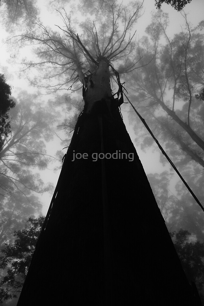 all alone in a sea of others by joe gooding