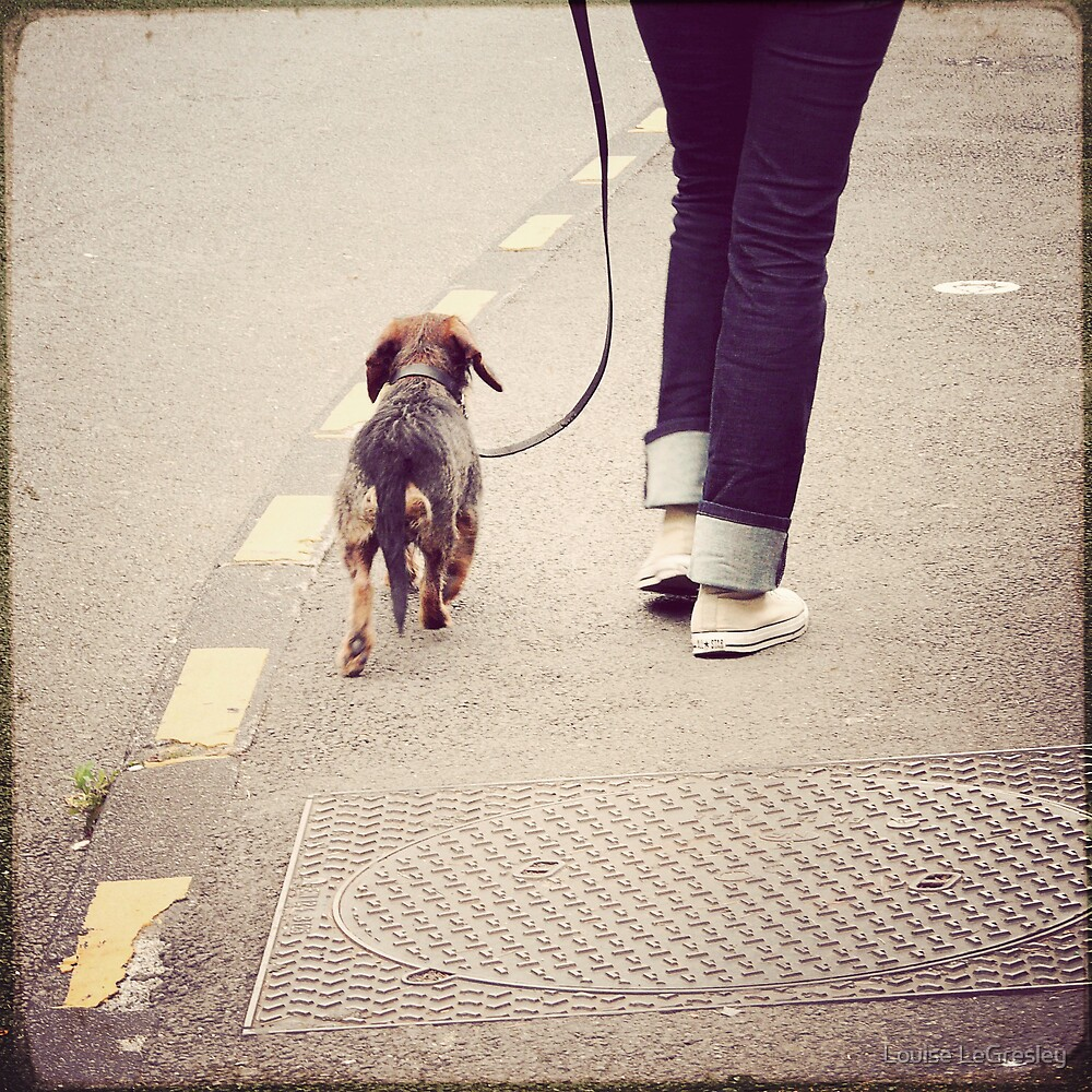 { out for a walk } by Louise LeGresley
