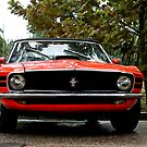 Mustang by Jonicool