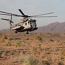 Ein US Marine Corps CH-53 Sea Stallion Helikopter landet um Marineinfanteristen abzuholen. von StocktrekImages