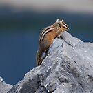 Climb every mountain ... by Ursula Tillmann