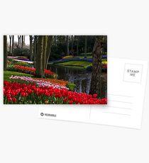Keukenhof Garden Postcards