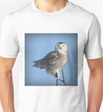 Balancing Talent (with snow) Unisex T-Shirt