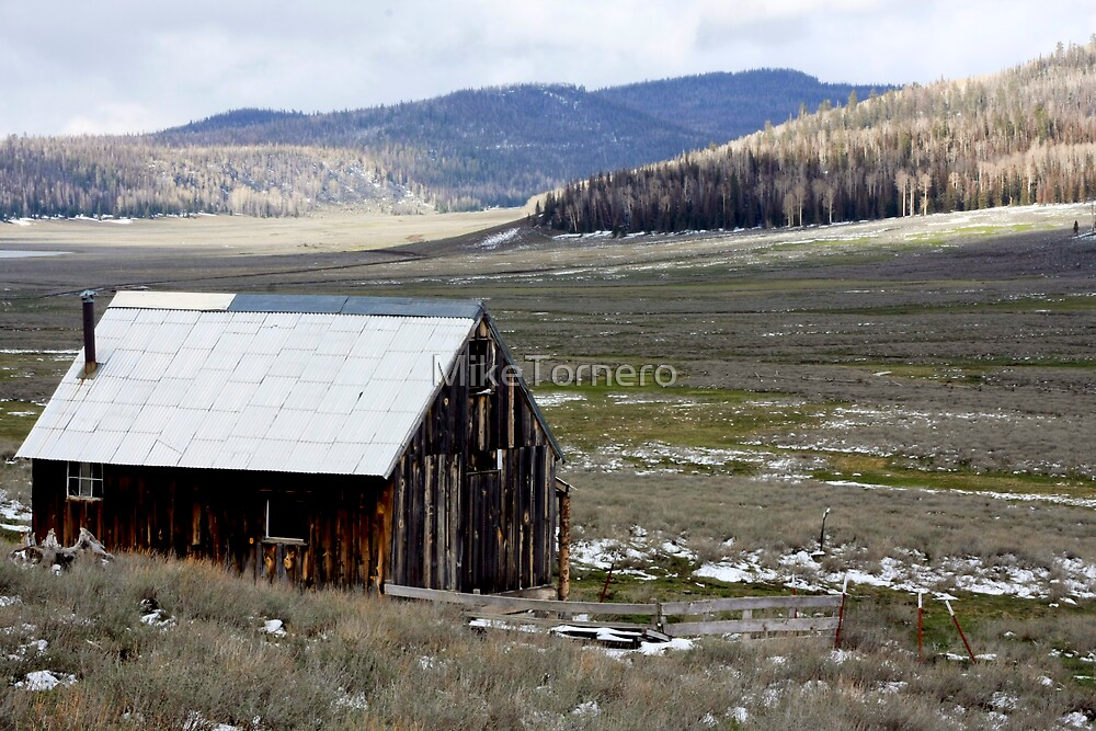 Old shack by MikeTornero