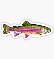 Rainbow Trout Graphic  Sticker