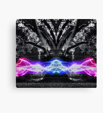 The Power of Nature HDR Canvas Print