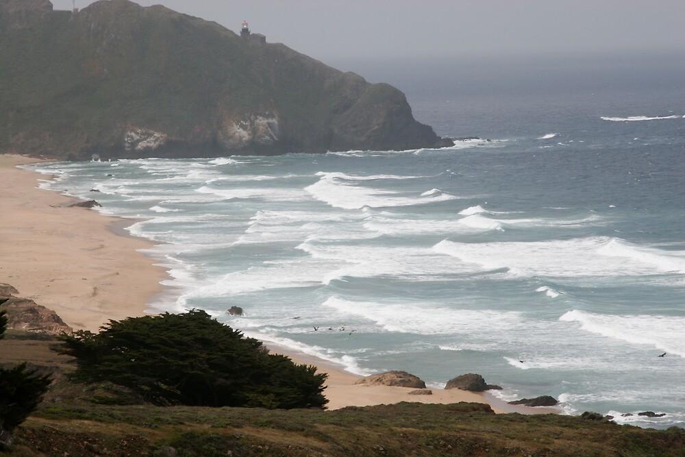 Big Sur Coast by MPDurbin