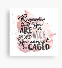 A Court of Wings and Ruin: You are a wolf... Canvas Print
