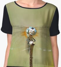 Dragonfly Women's Chiffon Top