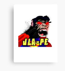 Super-JLA-PE Canvas Print