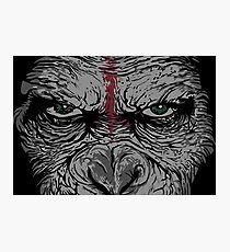 angry ape Photographic Print