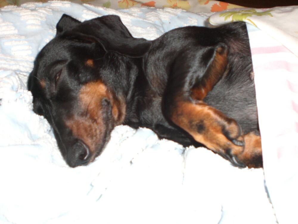 please let me sleep! by Ellaine Walker
