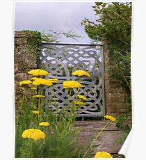 Yellow Tansy and a Gate Poster