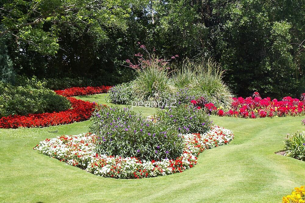 Garden of flowers by peano12