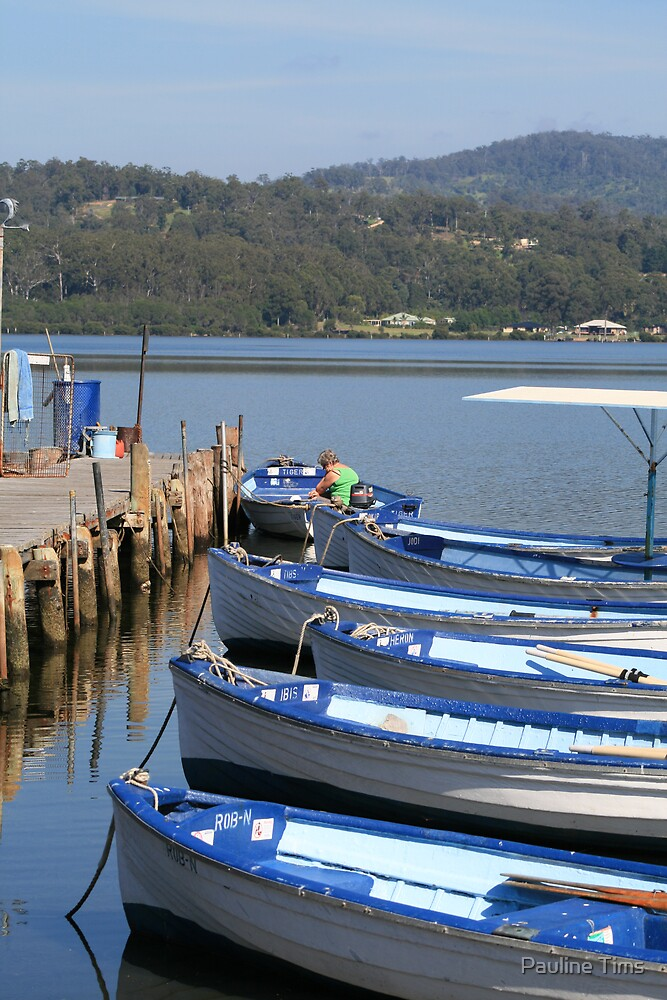 Boats on the Oyster Farm Merimbula NSW Australia by Pauline Tims