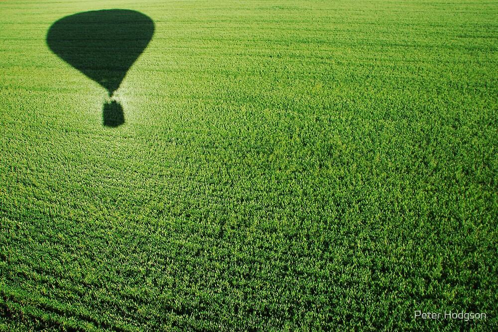 Balloon Shadow by Peter Hodgson