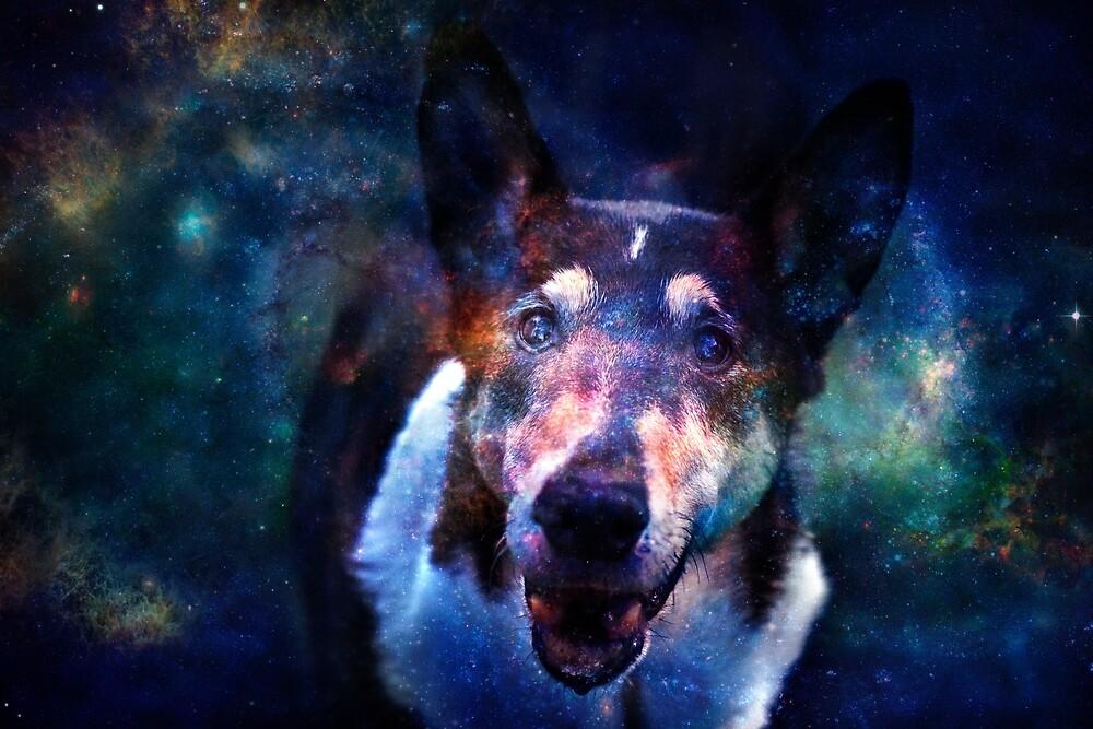 Galaxy Eyes by Laracoa
