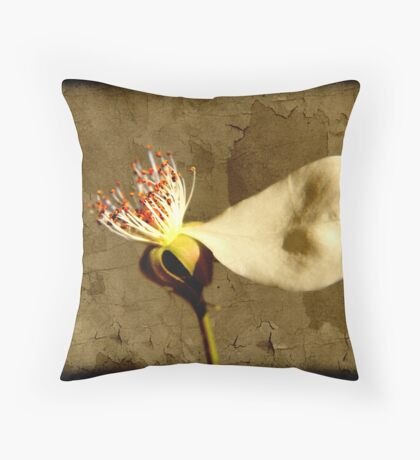 Superhero... Throw Pillow