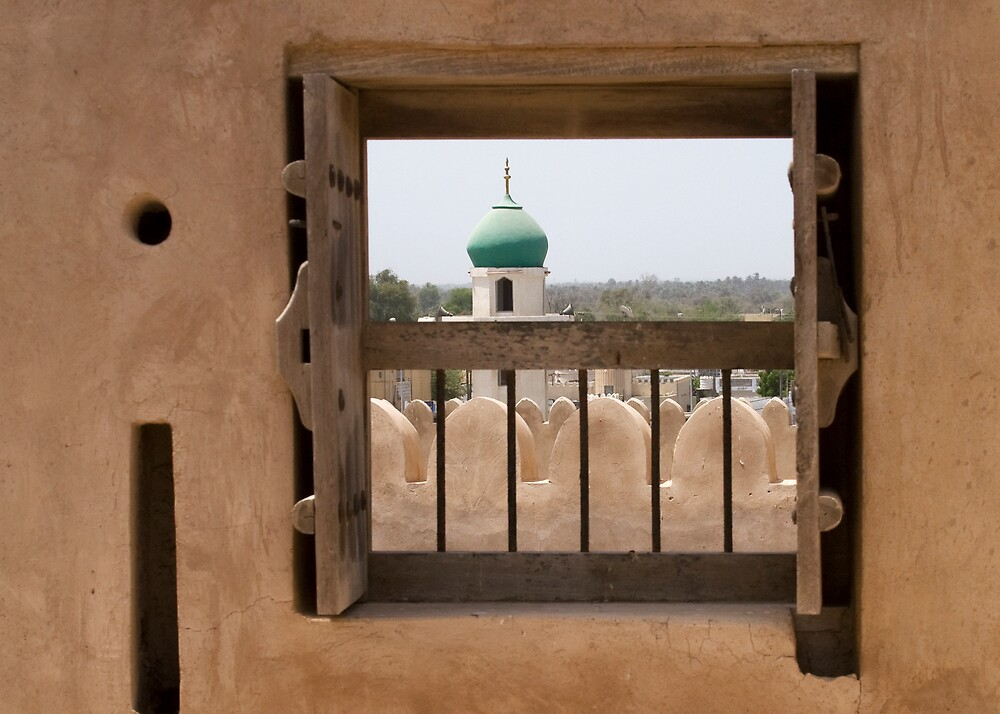Window at the Fort by marycarr