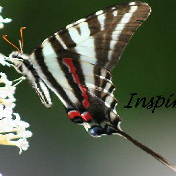 Inspire... by lyndamarie