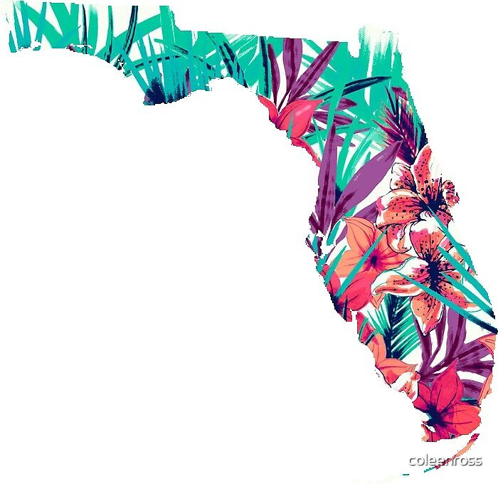 Florida by coleenross