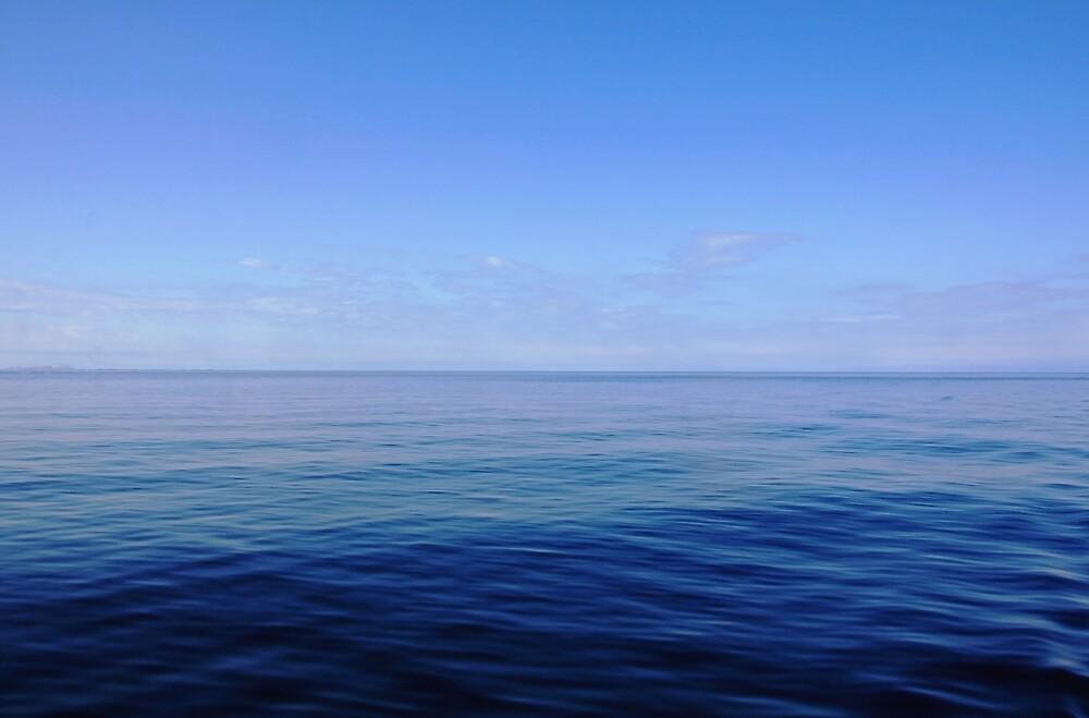 Forever Blue by Debbie Oppermann