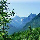 Polish Mountains  by HelenBanham