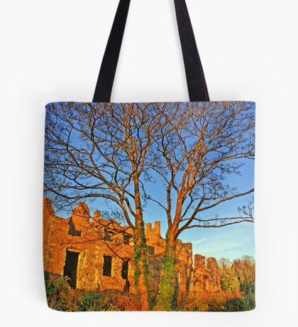 Neath Abbey - 12 century church side, Wales, UK Tote Bag