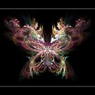 Butterfly by 4Flexiway