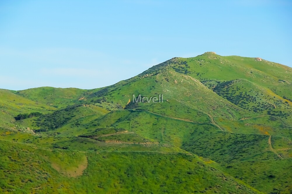 green field and green mountain with blue sky by Mrvell
