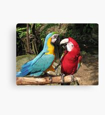 It's like this mate Canvas Print