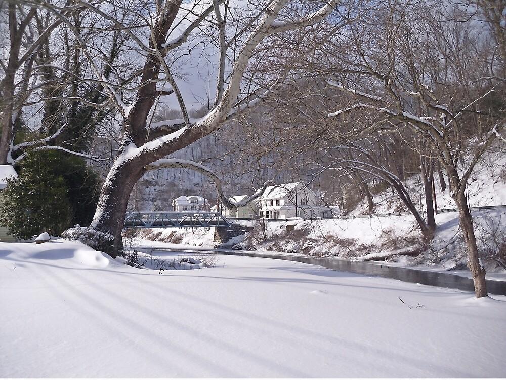 Snowy River  by Paul Lubaczewski