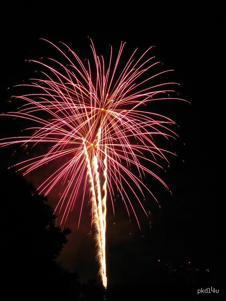Fireworks 4th of July by pkd14u