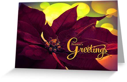 Burgundy Wine Christmas Poinsettia Seaon's Greetings by Doreen Erhardt
