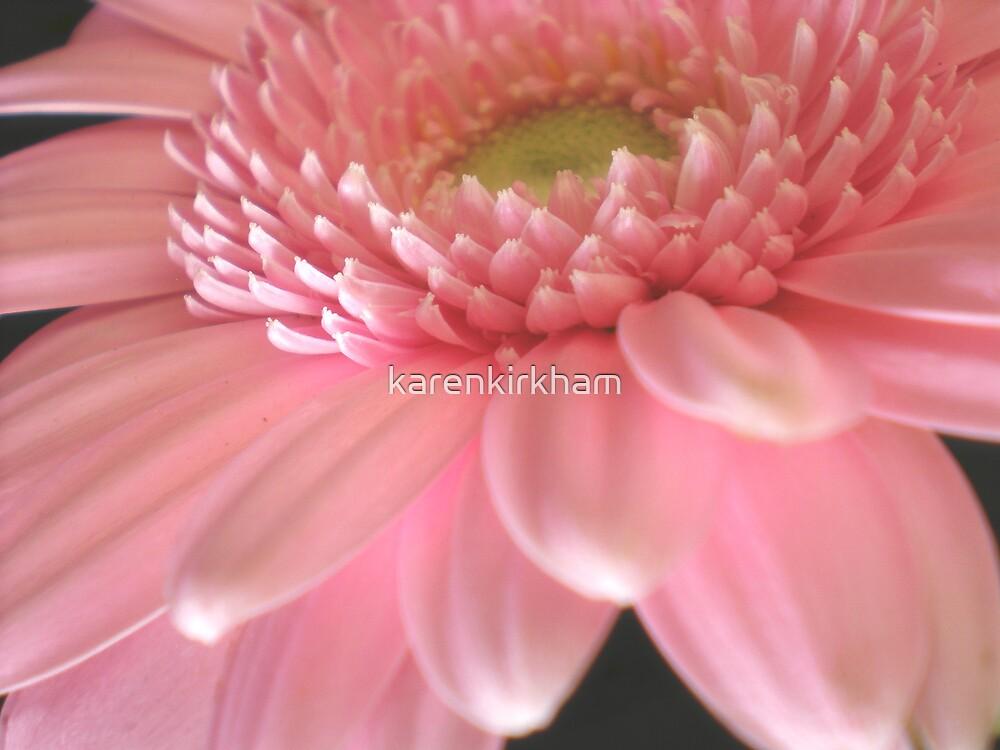 Pastel Pink by karenkirkham