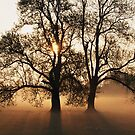 morning s broken  by mbrookes81