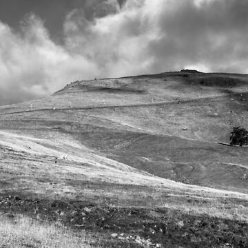 Up The Hill - B&W Landscape by Ollieography