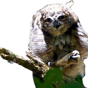 Wise Owl Sensei by BlueNorth