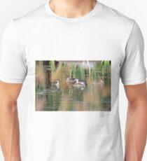 Grey Teals (120) T-Shirt