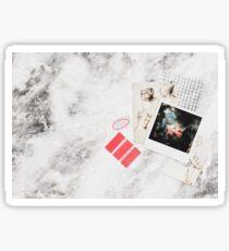 fine art aesthetic .01  // rococo  Sticker