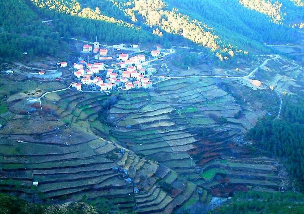 Beiras landscape by moix