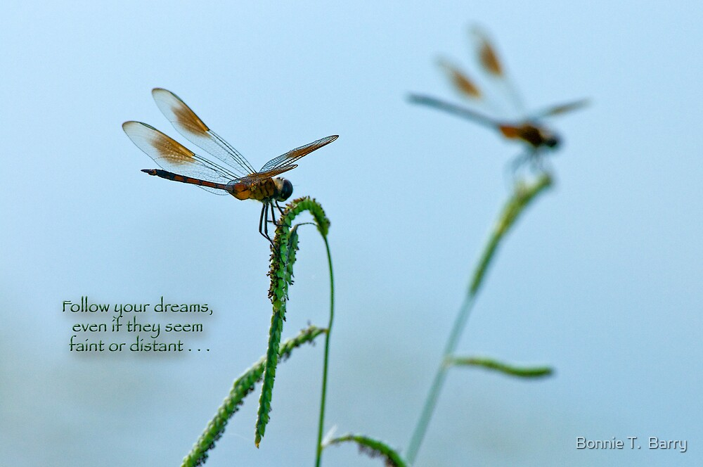 Follow your dreams even if they seem faint or distant . . . by Bonnie T.  Barry