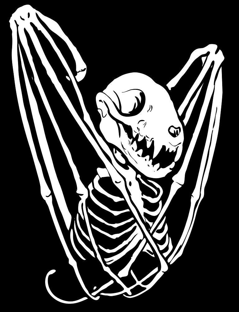 Bat skeleton by Lillian Ripley