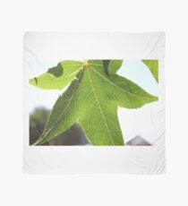 Vine Leaf Scarf